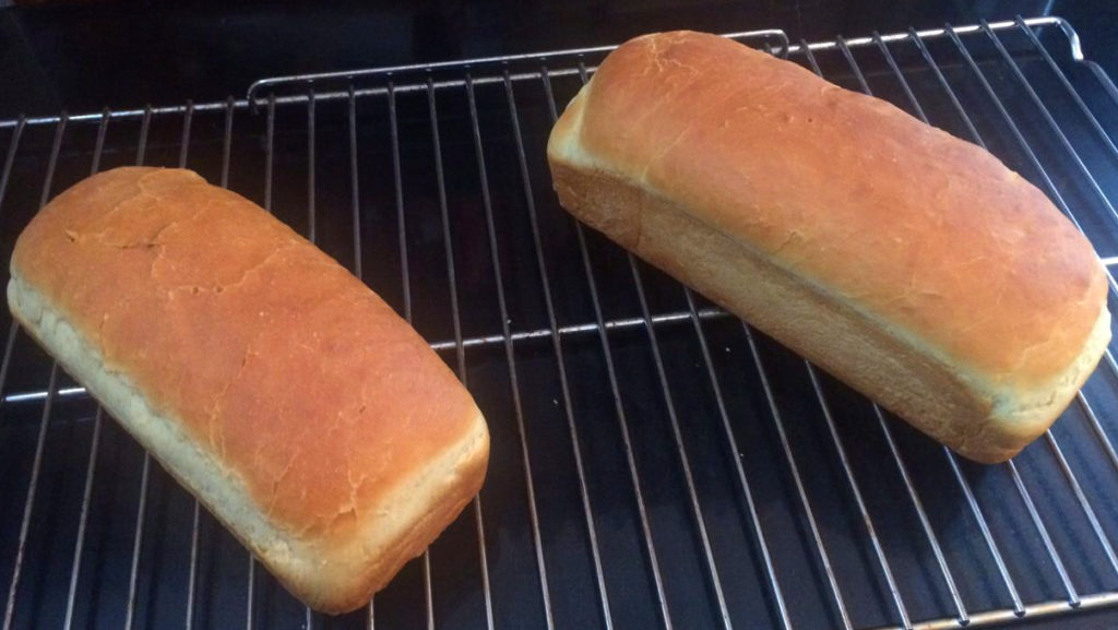 pane sandwich bread